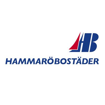 Jan Barthelsson, VD, Hammaröbostäder
